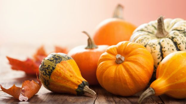 10-best-pumpkin-recipes-625_625x350_81439211735